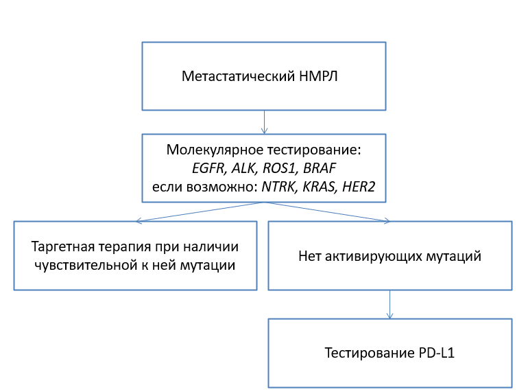 Тактика ведения пациентов с метастатическим НМРЛ