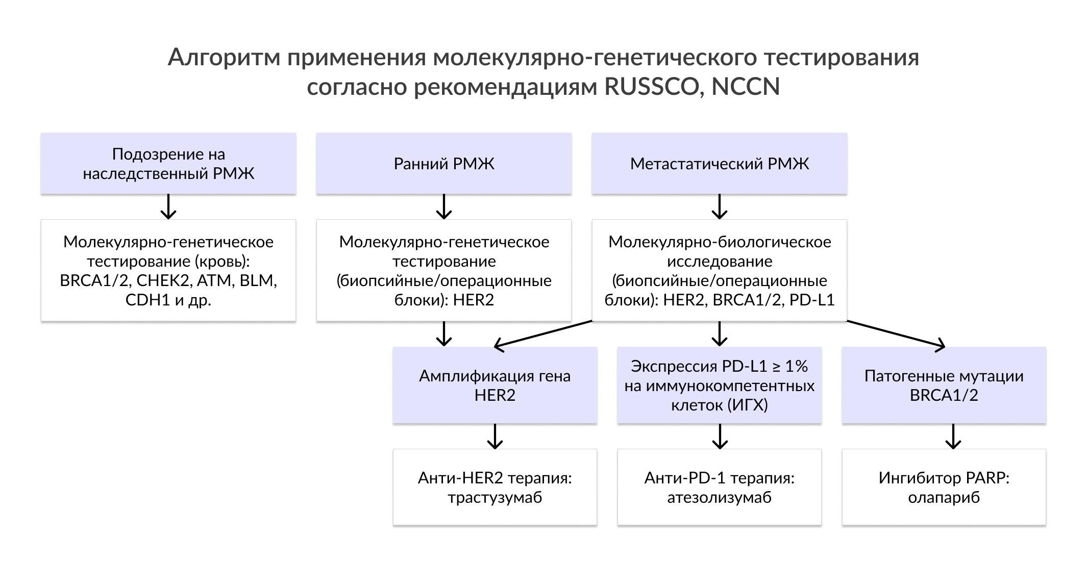 Алгоритм применения молекулярно-генетического тестирования согласно рекомендациям RUSSCO, NCCN