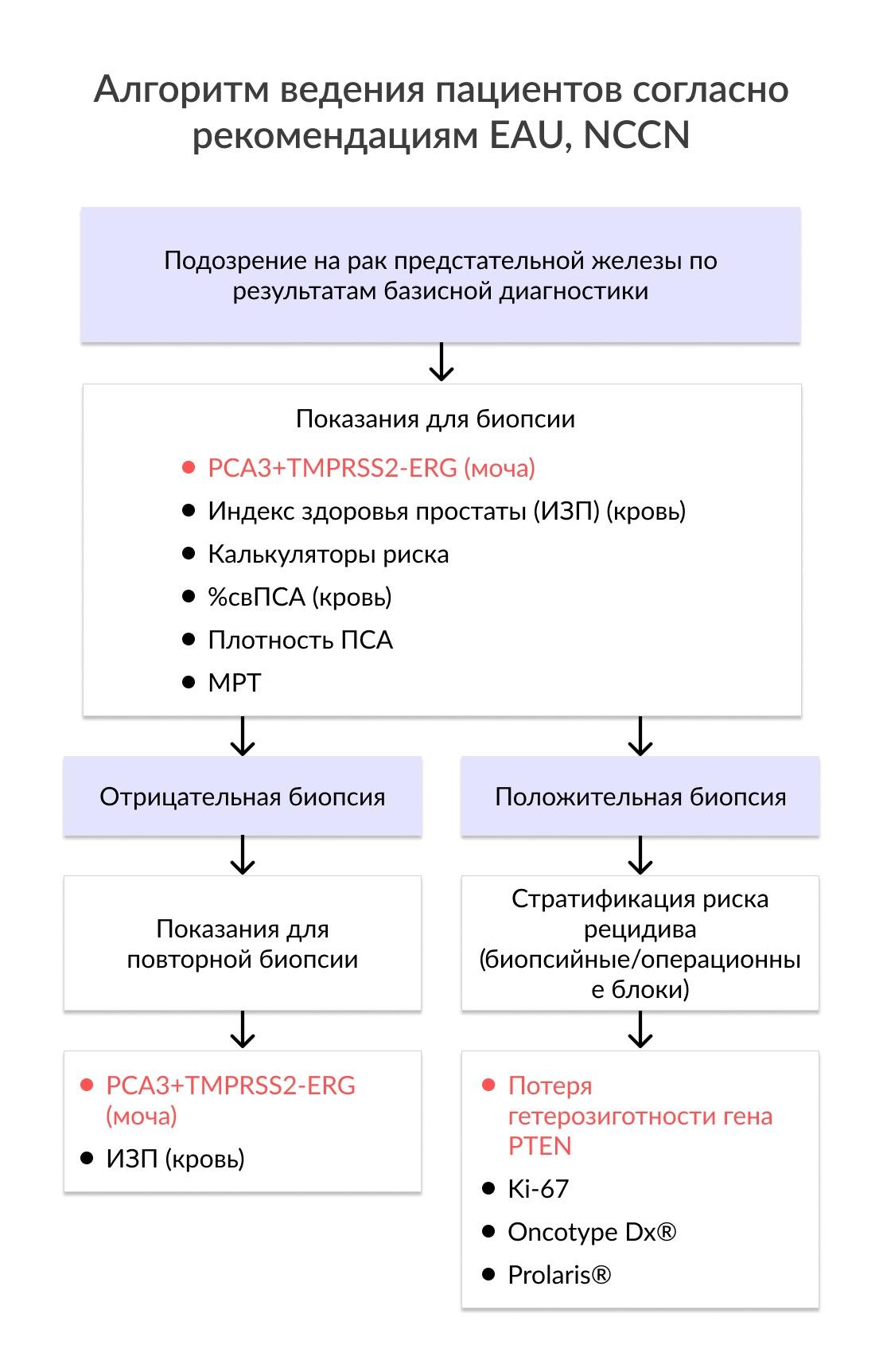 Алгоритм ведения пациентов согласно рекомендациям EAU, NCCN
